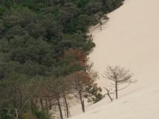 Дюна Пила, Dune du Pyla, Франция фото, горы во Франции