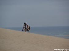 Дюна Пила, Dune du Pyla, фотографии Франции, окрестности Бордо, природа Франции
